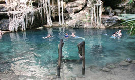 Swimming in cenote X-Batun